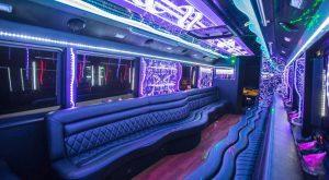 Edmonton Party Bus